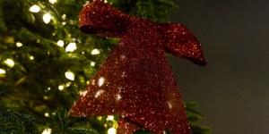 Christmas arrives in St Katharine Docks